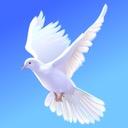Lina's Doves