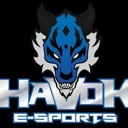 Havok Game Interprise / MMORPG