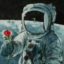 花兒與少年