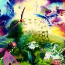 Iris Dream World