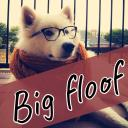 the BIG floof