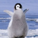 Icon for Penguin Plaza