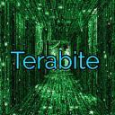 TeraBite discord hub