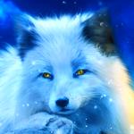 Icon for O planeta das raposas