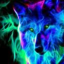 Moon Stalkers (Wolf RP)