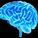 Neurodivergent Community