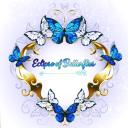 Eclipse of Butterflies