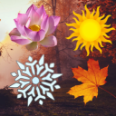 The Seasonal Sanctuary