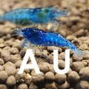 Aquarium united