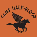 Camp Half Blood Percy Jackson Rp