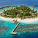 The Island Of OCs