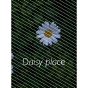 Daisy Place