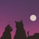 Lunar Light 🎄
