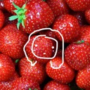 Strawberry Cult