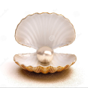The Wealth Pearl