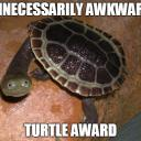 Awkward Turtles