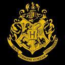 Hogwarts: The Next Generation