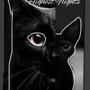 ~Highest Flights ~ Warrior cat roleplay.