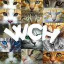 WCH Hangout