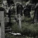 Paranormal Club (13+)