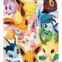 Evolution of the Eevees