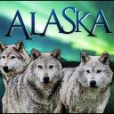 Alaskan Packs