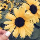 Sunflower Meadow 🌻🌿