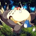 The Totoro Cave