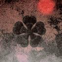 clovermc Logo