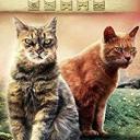 A Warrior Cats RP