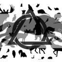 Animality V2