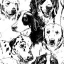 Dogs of Moonholde