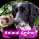 Animal Amino