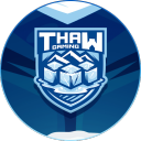 Thaw Gaming Elite Warzone LFG Icon
