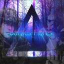 Barnes Flores YouTube