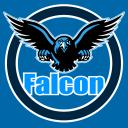 Falcon Gaming Community