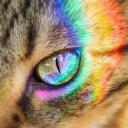☔[RAINBOW]🌈
