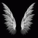 Archangel's Haven