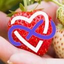 The Love Farm
