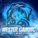 Wester Gaming ™