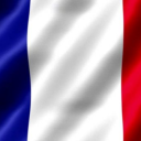 Republic of France Political Simulation