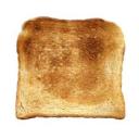 toastlands