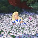 ˚✧₊⁎ ✿ Alice's garden ✿⁎⁺˳✧༚