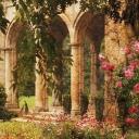 Wanderer's Garden