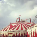 ┊˚♡ The Circus  ♡˚┊