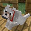 Minecraft Fan Club