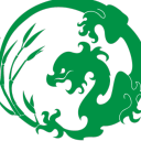 The Jade Dragons Icon