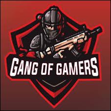 Logo for Gamer gang gang!