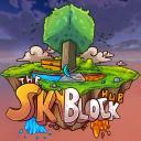 SkyBlock Coins