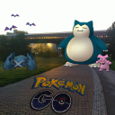 Pokémon Go Central Park  P13